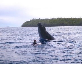 Martin's wife Kym, with a whale breaching in front of her - Tonga